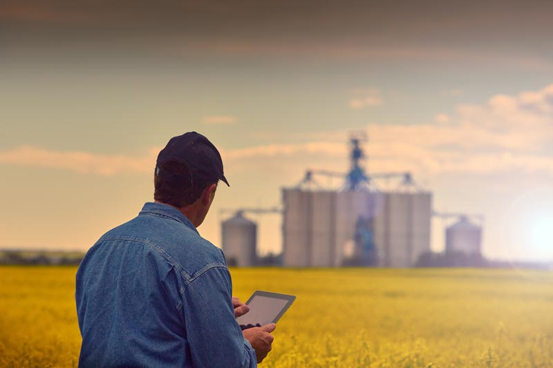 A farmer looking at his tablet in a field with grain elevators in the distance